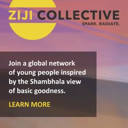 Ziji_Collective